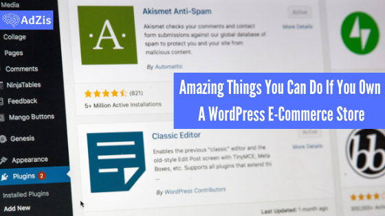 Amazing Things You Can Do If You Own A WordPress E-Commerce Store